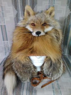 Kodiak Red Fox