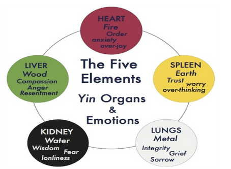 How do your emotions influence your internal organs?