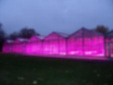 Réalisation de serres multichapelle par CMF pour l'université catholique de Louvain avec un système d'éclairage LED