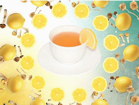 ¿Cómo preparar Lemon Tek de Hongos Mágicos? La guía completa para intensificar tu próximo viaje.