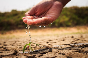 What is causing the water crisis