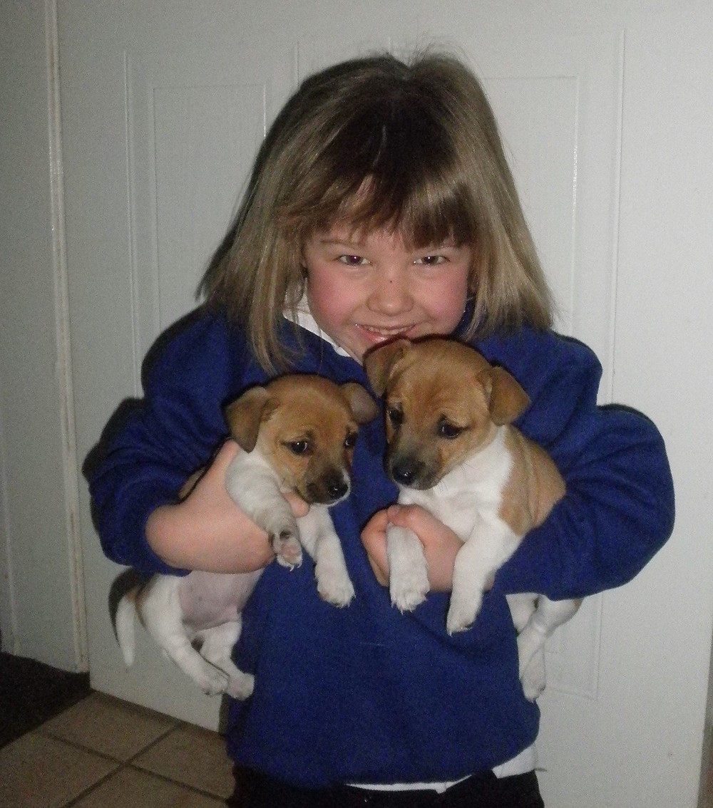 PhoebePuppies.JPG