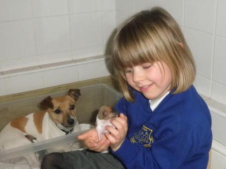 Dot has had Puppies!