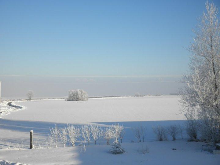 SnowSea3rdDec2010.jpg