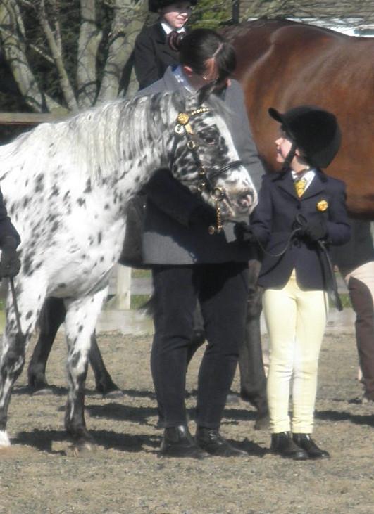 110312 Port Royal Phoebe Georgie Me bonny pony3.jpg