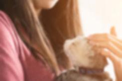 Cat-banner-1024x684.jpg