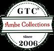 LOGO AMBE NEW.png