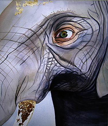 Elephant circa 2007