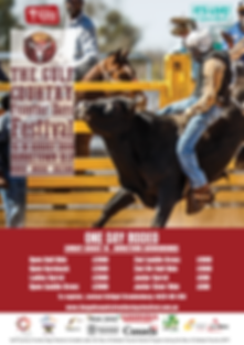 A3 Rodeo Prizemoney Poster_Final.png
