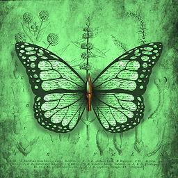 Nibwing with nib Botanic Emerald.jpg