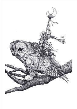 Pure Owl.jpg
