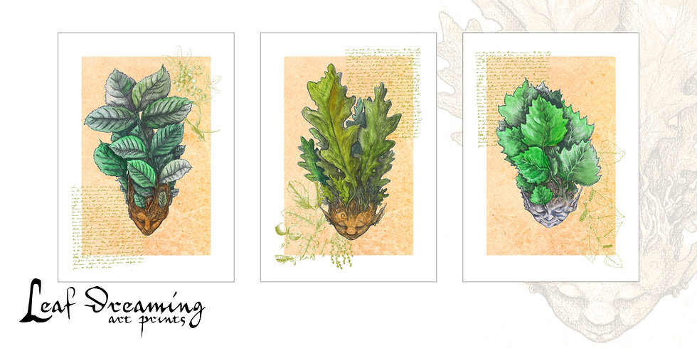 Leaf Dreaming Three Print Set