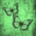 Nibwing Emerald Botanica Large.jpg