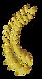 月桂冠L.png