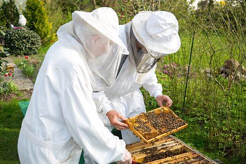 4/18 Both Intro and Intermediate Beekeeping Seminar