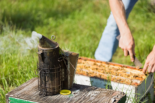4/3  Intermediate Beekeeping Mini Seminar  3:00-5:30
