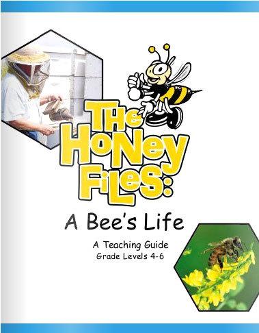 honey-files2