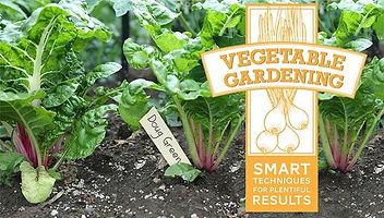 vegetablegardeningsmarttechniquesforplen
