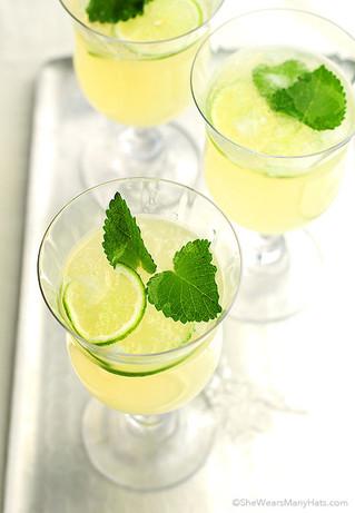 Honey Lemon Balm Spritzer