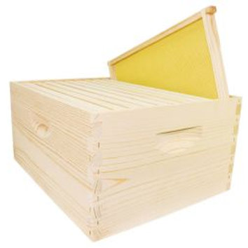 "10 Frame 9 5/8"" Hive Kit - Wood Frames with Rite Cell Foundation"