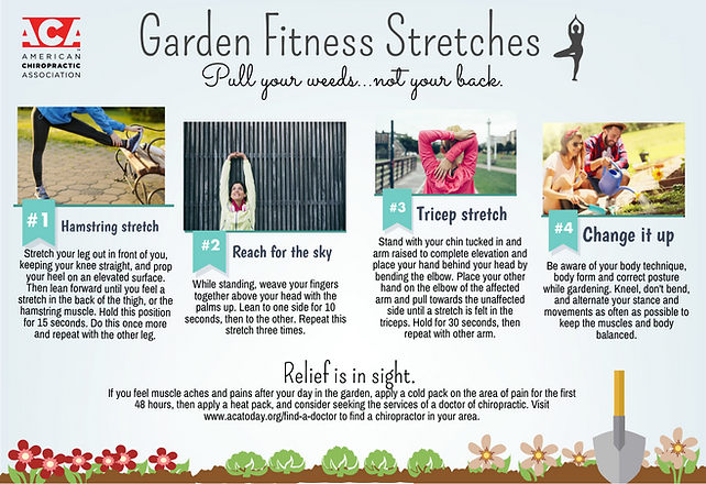 Garden_Fitness_Stretches.png