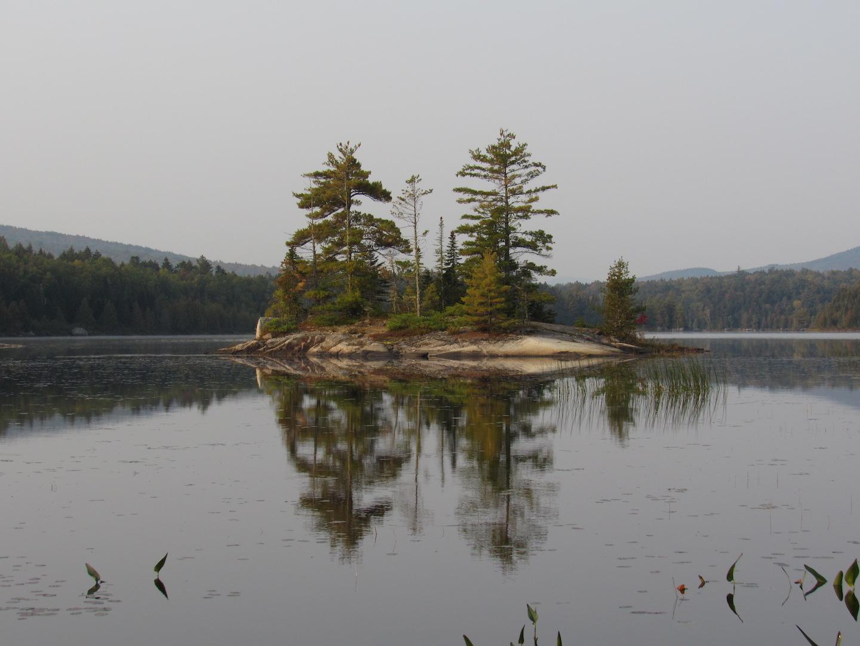 Island in Pollywog Pond