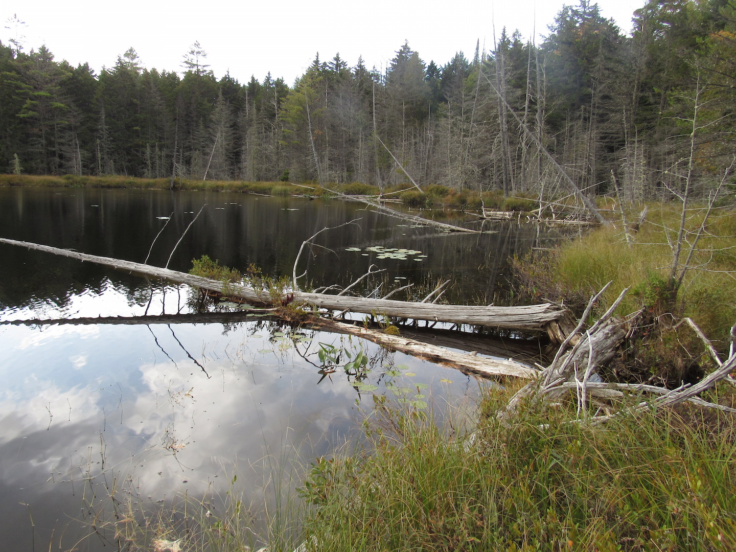 Crescent Pond on the AT near gorge