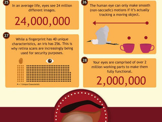 Fun Facts About Eyes