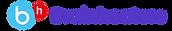 BH.Logo.2.png