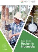 200615_GA Rubber Report_Digital (Final)-1.png