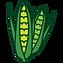 PPSA_Corn.png
