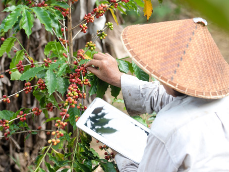Shifting Investments Toward the Smallholder Farmer
