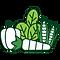 PPSA_Vegetables.png