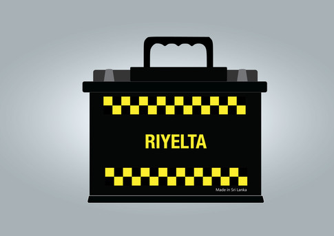 RIYELTA Vehical Battery