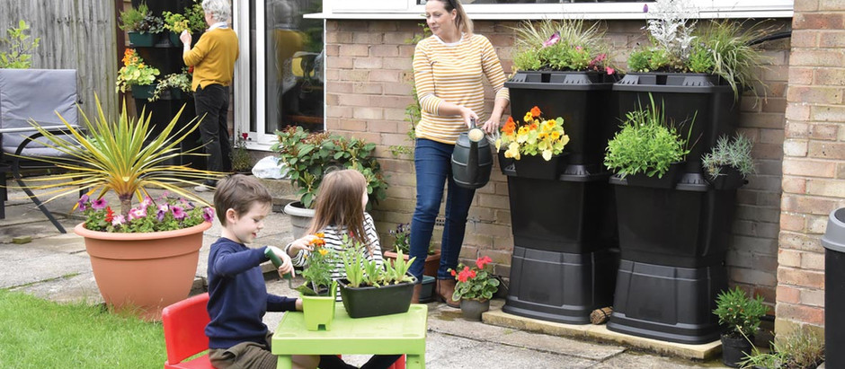 An introduction to Rainwater Terrace