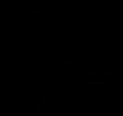 T_TFest-2019-Logo-Mono-Black-800x750px.p