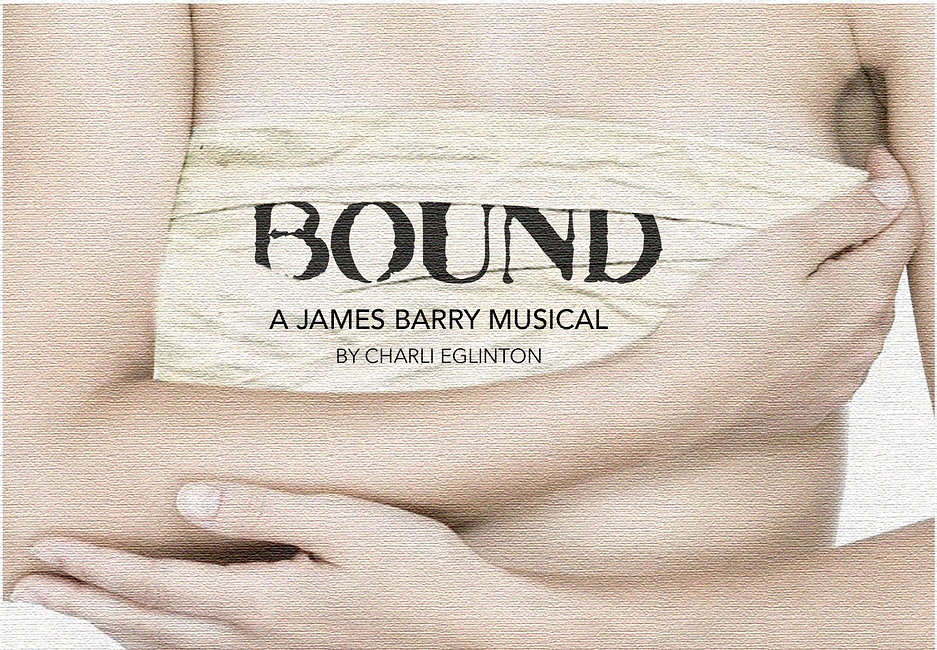 BOUND CANVAS COVER .jpg