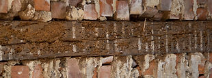 wood boring beetle damage to timber lintel