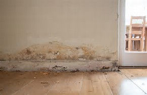 rising damp tide marks blown plaster