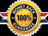 100_-Money-Back-Guarantee-6.png