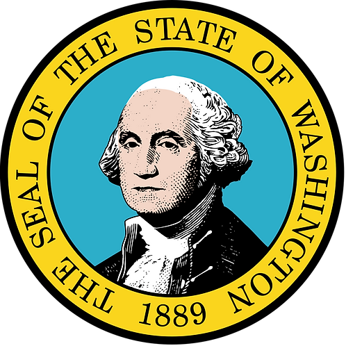 Washington annual franchise tax for LLC