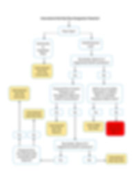 Designation Flowchart.jpg