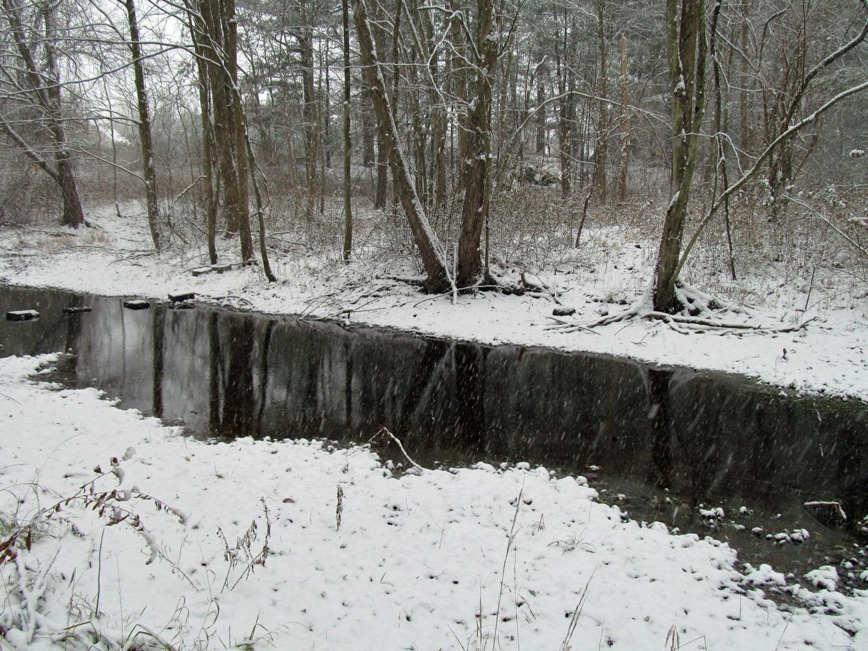 Fresh Meadows Mill River