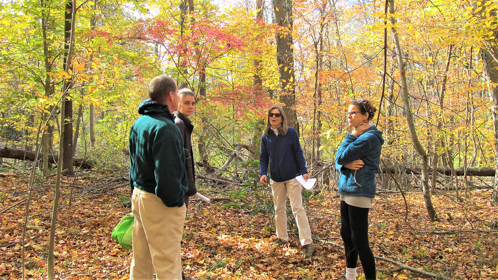 Katie B. led the October hike at Brooke Preserve