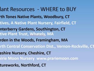 Pollinator Pathway Resources