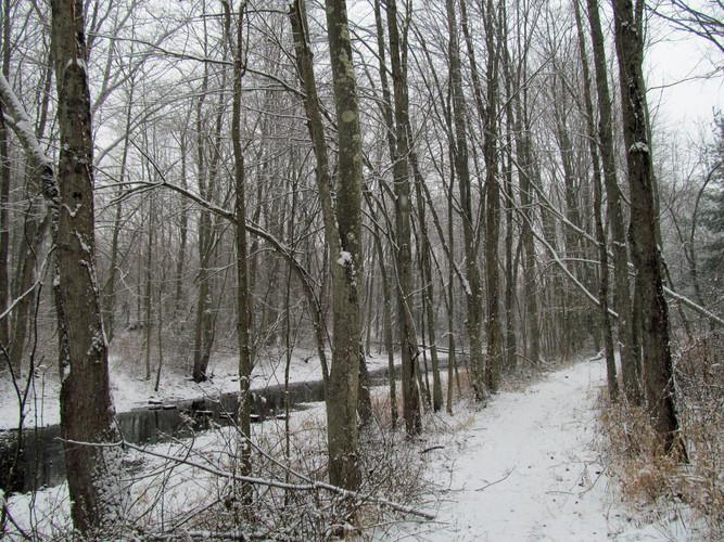 Fresh Meadows Mill River path