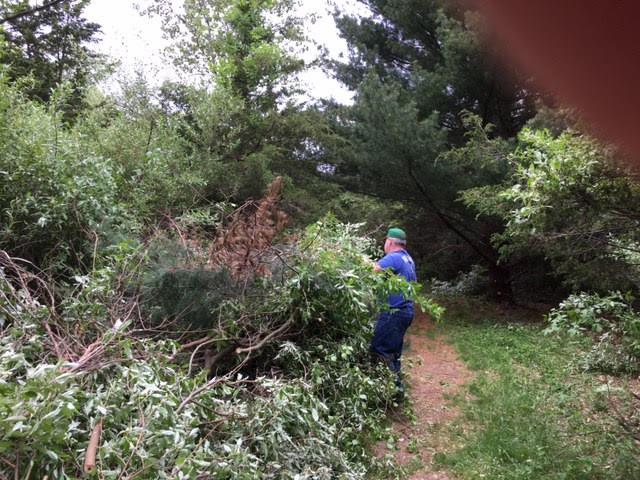 Fresh Meadows stewardship day