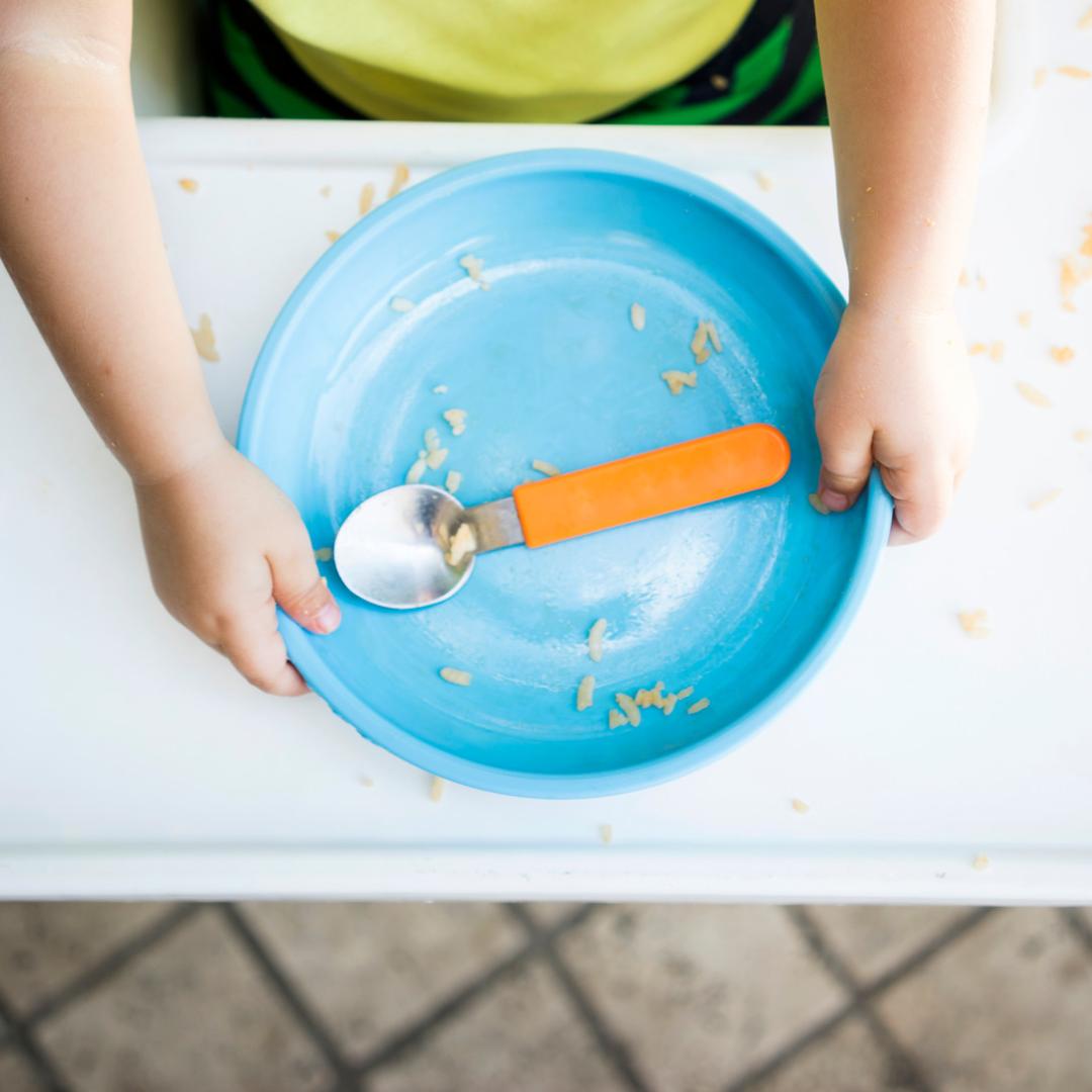 Curso Alimentación Para Toddlers