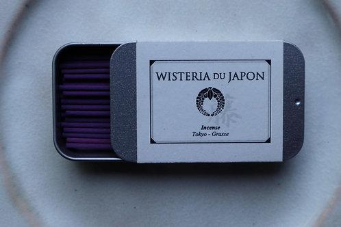 藤 wisteria du japon