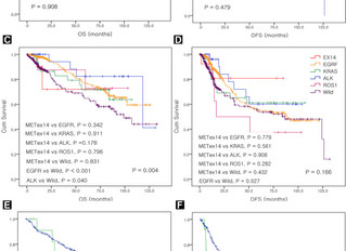 [New paper] MET exon skipping in lung cancer